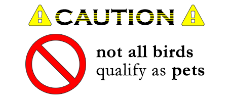 CAUTION- Not All Birds are considered pets