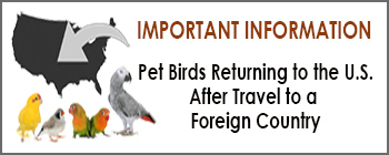 Pet Birds Returning to U.S. After Travel to a Foreign Country
