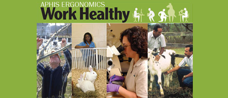 APHIS Ergonomics Program
