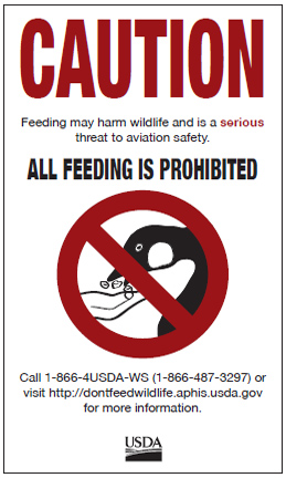 Don't Feed the Wildlife Poster