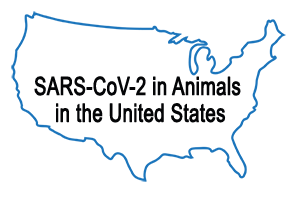 Map of the U.S.  Cases of SARS-CoV-2 in Animals in the United States