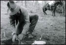 Specialist setting a foothold trap for wolves (circa 1950s/1960s).