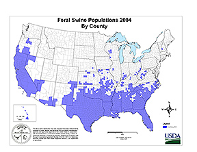 Feral Swine Populations 2004 by County