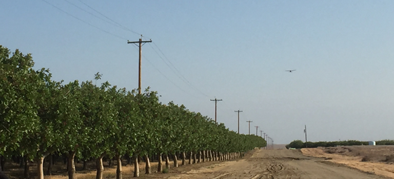 The California Department of Agriculture and the California tree nut industry release sterile navel orangeworm moths over a remote test area in the San Joaquin Valley.