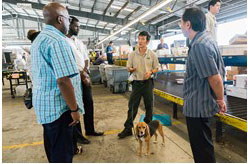 Beagle brigade trainer explains the process to C&E staff (C. Brown, M. Alston, A. Nakamura)
