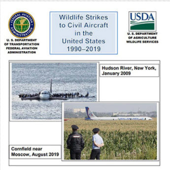 WS Wildlife Hazard Report