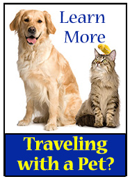 Pet Evacuation Guidance to the U.S. for Cats, Dogs, Birds due to Hurrican Dorian