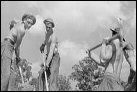 photo of female Civilian Conservation Corp workers