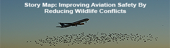 Story Map: Improving Aviation Safety By Reducing Wildlife Conflicts