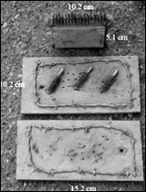 Man-made rub stations used in coyote and wolf sampling study.