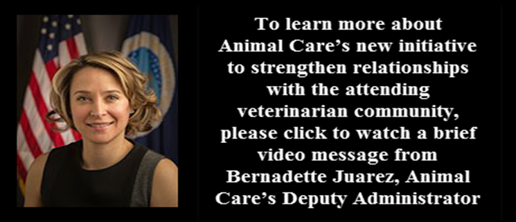 a new initiative to strengthen relationships with the attending veterinarian community