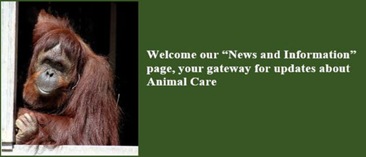 Welcome to our News and Information Page- Your gateway for updates about Animal Care